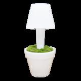 LED Vaas Rond met lamp _