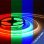 COB-LED-Strip-560-LEDs-meter-RGB+WW-IP65